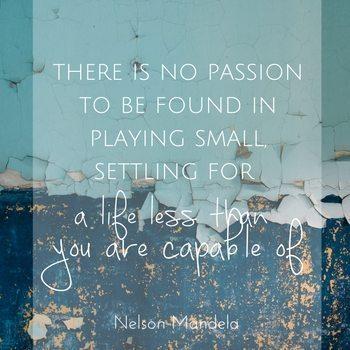 Naomi Saelens Passion